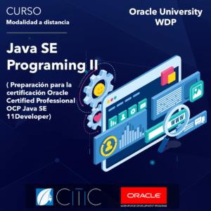 Oracle, Programación