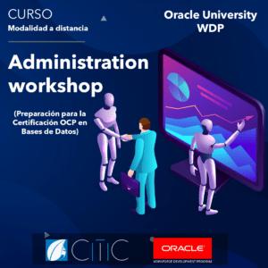 Oracle, Programación, Bases de datos, SQL